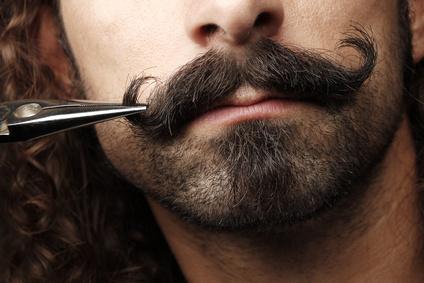 perfekt hipster beard